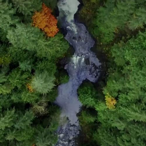 Vracíme vodu lesu