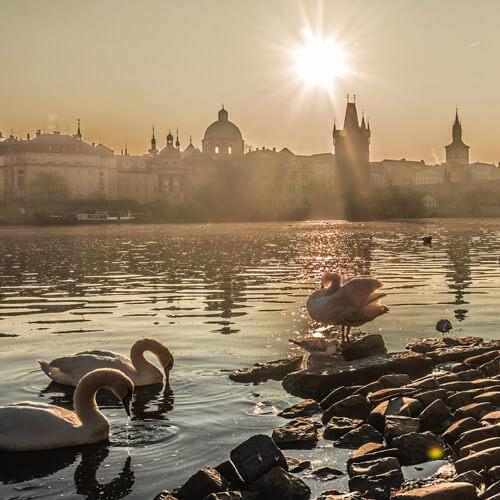 Záhada pražských Amazonek